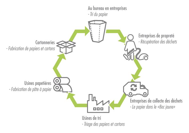 cycle-de-vie-poubelle-en-carton